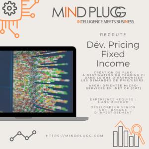 Mindplugg recrute un développeur Pricing Fixed Income