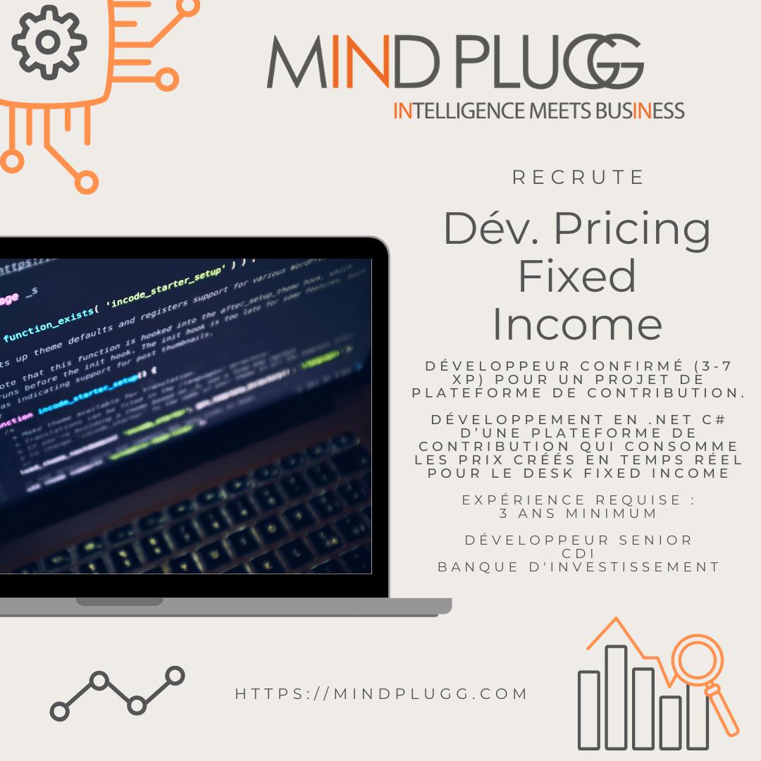 Développeur wanted, développement d'une plateforme de contribution, Mindplugg